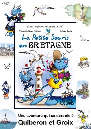 Affiche d'un livre sur la Bretagne